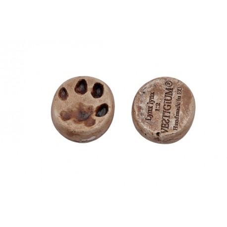 Lynx paw magnet